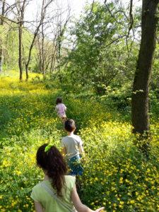bimbi che camminano tra fiori gialli